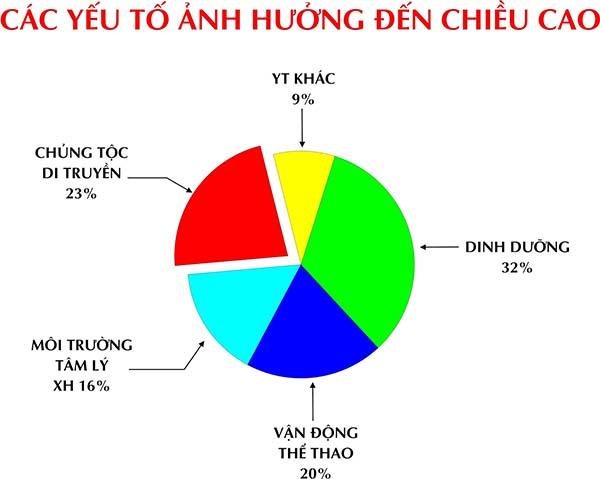 cach-tang-chieu-cao-cho-tre-5-14-tuoi-tangchieucaonet-2