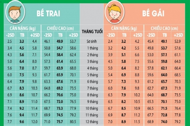 Bảng chiều cao cân nặng chuẩn của trẻ